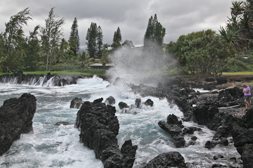 The lava rocks on the Ke'anae Peninsula. jpg