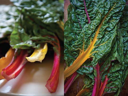 Swiss-Rainbow-Chard-Tart-Green-Onions-Green-Garlic-Eat-The-Love-Irvin-Lin-Vertical-Composite-2