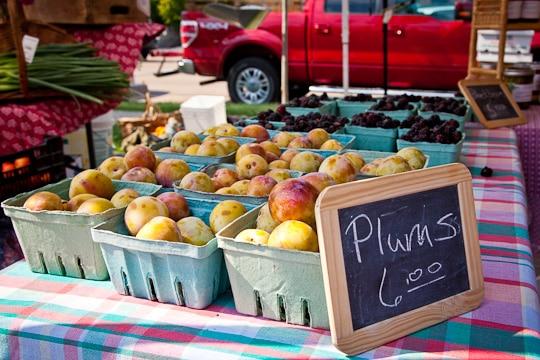 Plum Tart | Plum Tart Recipe | Eat the Love