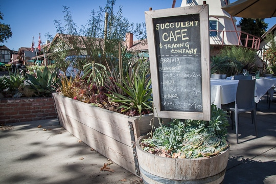 Succulent Cafe in Solvang, California. Photo by Irvin Lin of Eat the Love. www.eatthelove.com