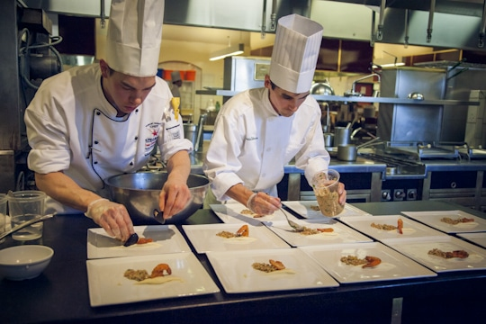 a career in the culinary arts essay A career in the culinary arts the culinary arts provide many career opportunities within the food service industry as this industry has grown and prospered, a career in this field has become highly visible and offers the flexibility to work anywhere.