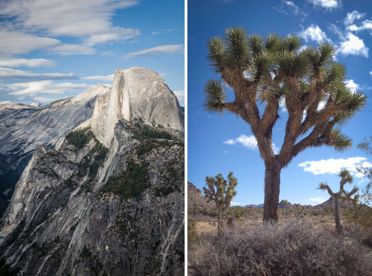 Yosemite and Joshua Tree National Park.