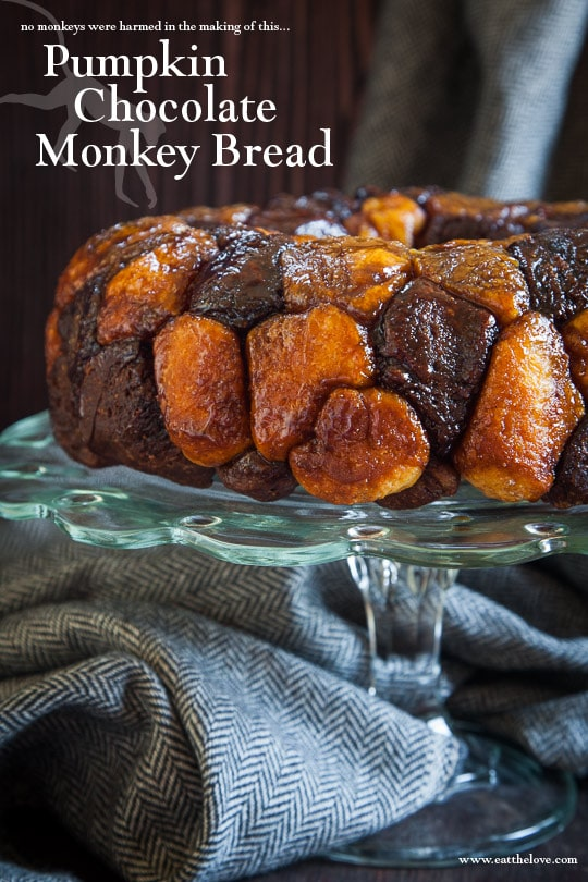 Pumpkin Chocolate Monkey Bread. Recipe and photo by Irvin Lin of Eat the Love.