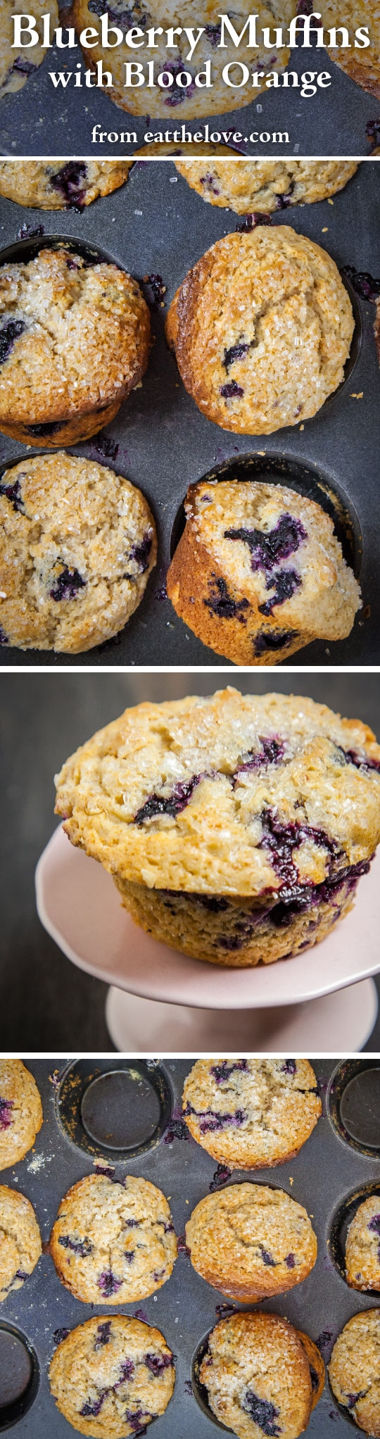 Blueberry Muffins Recipe | Homemade Blueberry Muffins | Eat the Love