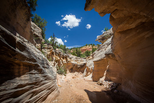 Willis Creek Slot Canyon Hike in Utah. Photo by Irvin Lin of Eat the Love.