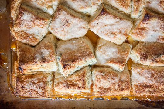 yellow plum salsa peach cobbler peach and plum pie peach cobbler plum ...