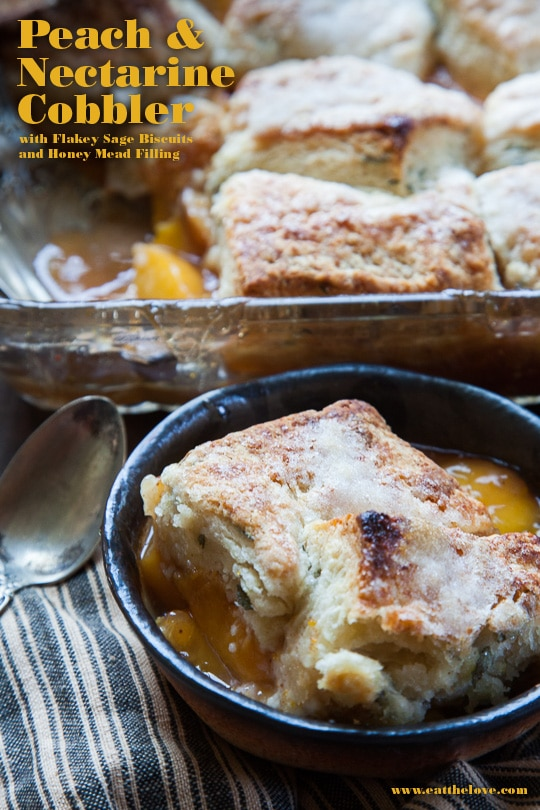 Peach and Nectarine Cobbler with Sage Biscuits and Honey Mead Filling
