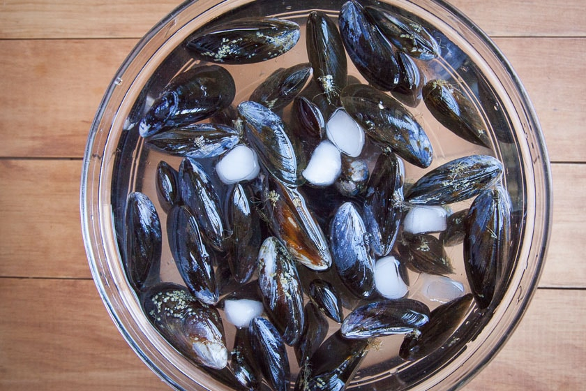 place mussels in ice water.
