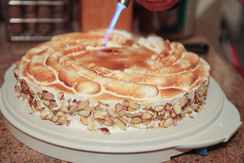 Genoise Cake and torch