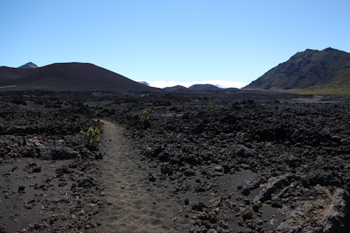 The trail continued through the lava field but we turned around. jpg