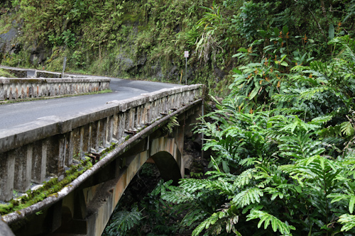 One of the numerous one lane bridges on the Road to Hana jpg