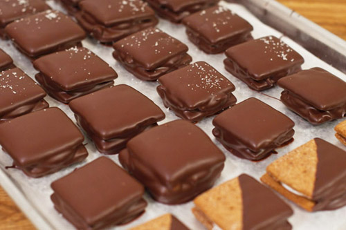Chocolate dipped smores. jpg