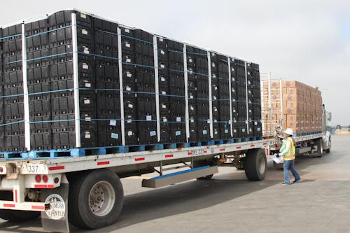 See those black cartons? Full of lettuce heading to Walmart. jpg