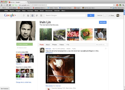 Irvin-Google-plus-homepage