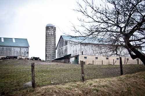 Ohio-Amish-Country-Countryside-Eat-The-Love-Irvin-Lin-3