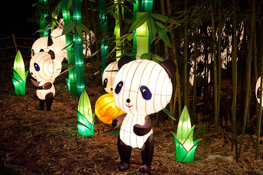 Chinese-Lantern-Festival-Botanical-Garden-St-Louis-2012-Irvin-Lin-Eat-The-Love-3