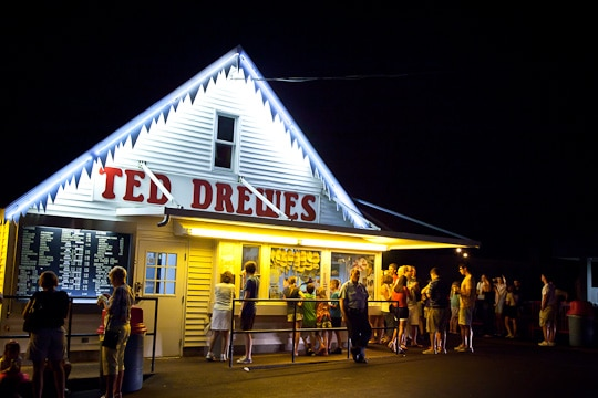 Ted-Drewes-Park-St-Louis-Irvin-Lin-Eat-The-Love-2