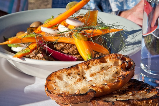 Pureed vegetables with grilled bread at Outstanding in the Field