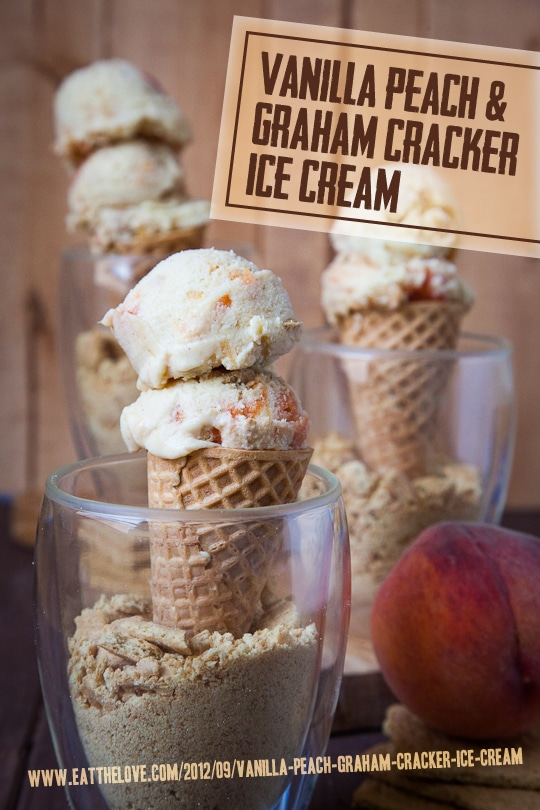 Vanilla Peach and Graham Cracker Ice Cream and the Big Summer Potluck