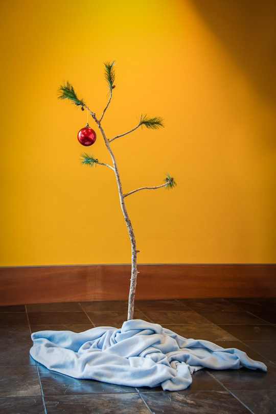 A Charlie Brown Christmas Tree at the Charles M. Schulz Museum by Irvin Lin of Eat the Love