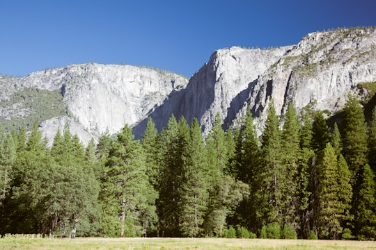 Yosemite National Park by Irvin Lin of Eat the Love. www.eatthelove.com