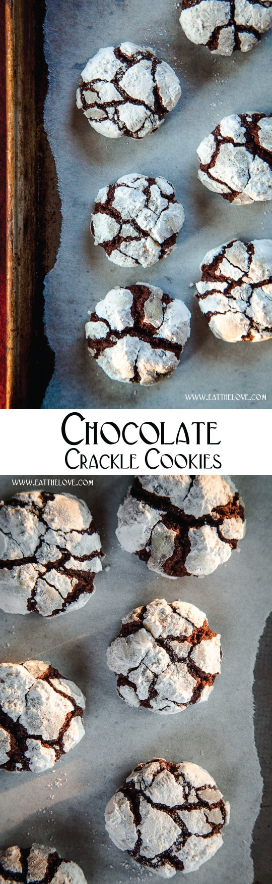 Chocolate Crackle Cookies or Chocolate Crinkle Cookies are the best holiday cookie! Photo and recipe by Irvin Lin of Eat the Love.