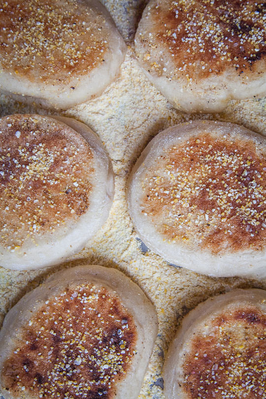 English Muffins Recipe. Photo and recipe by Irvin Lin of Eat the Love.
