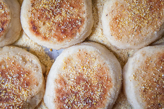 Homemade English Muffins. Photo and recipe by Irvin Lin of Eat the Love.