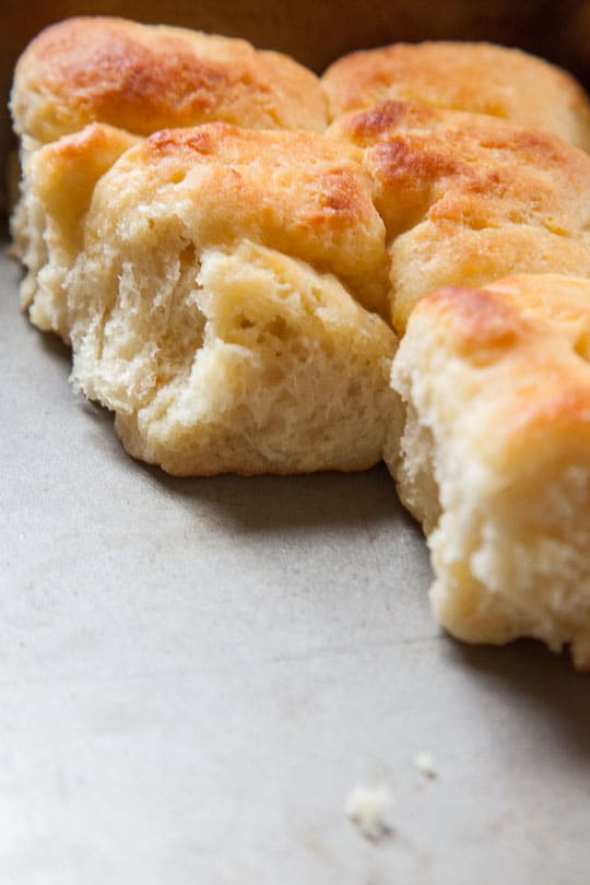 Potato Rolls that are easy requiring no kneading! Photo and recipe by Irvin Lin of Eat the Love