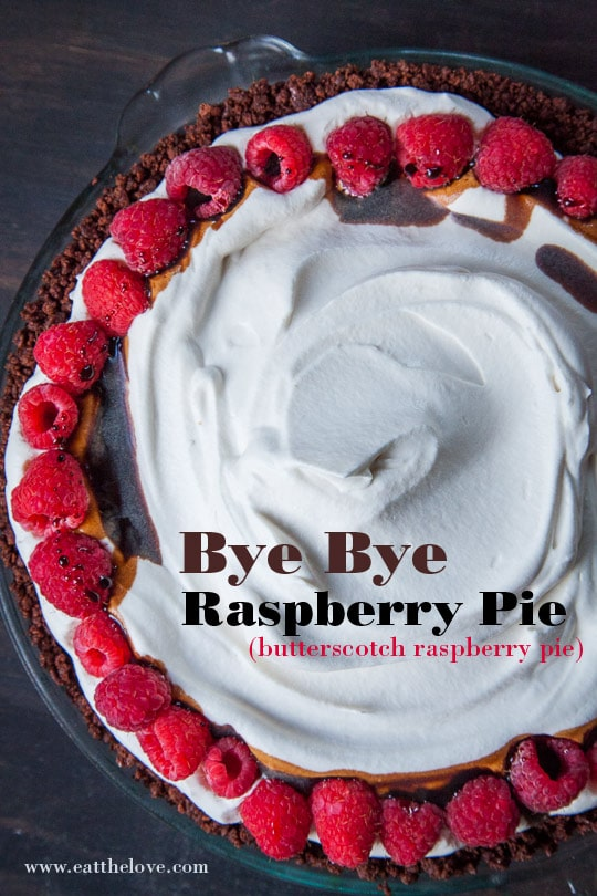 Butterscotch Raspberry Pie aka the Bye Bye Raspberry Pie. Photo and recipe by Irvin Lin of Eat the Love.