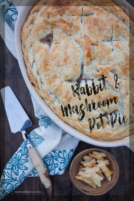 Rabbit Pot Pie with Wild Mushrooms. Photo and recipe by Irvin Lin of Eat the Love.