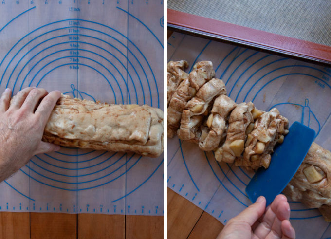 Squish the dough into a log, then cut into 1-inch discs.