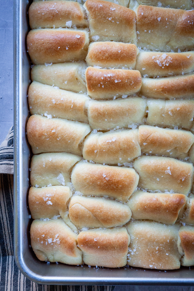 a close up of overnight Parker House Rolls in a baking pan.
