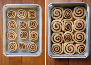 Place the cinnamon roll disks in the pan. Let rise until the rolls are touching.