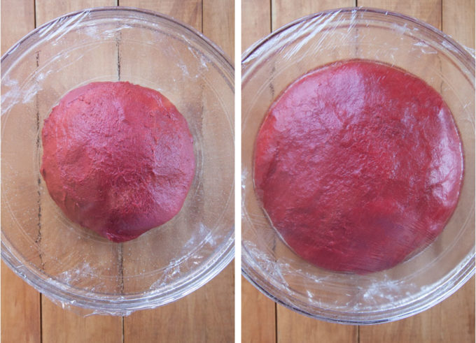 place the dough in a greased bowl, cover with plastic wrap and let rise until double in size.