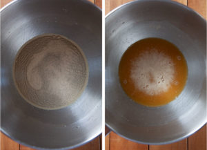 Left image is yeast sprinkled over water with barley malt syrup dissolved in it. Right image is some foam on top of the surface of the liquid, showing the yeast has been proofed.