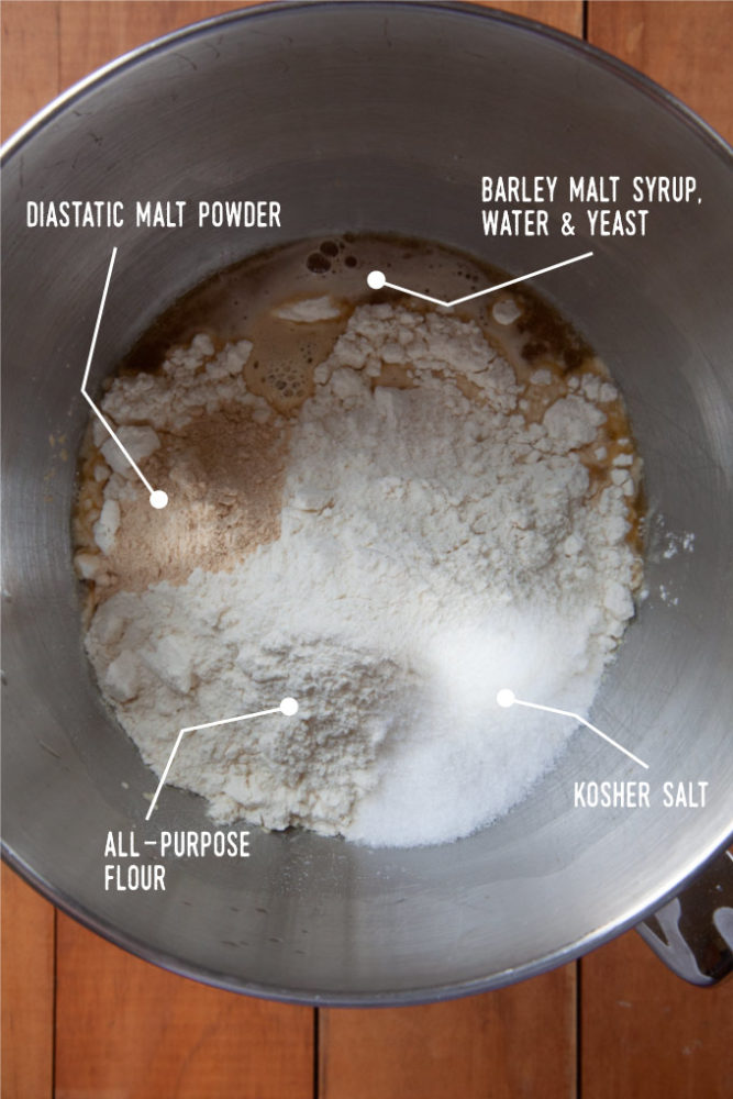 Diastatic malt powder, water, barley malt syrup, yeast, flour and kosher salt in the bowl of a stand mixer.